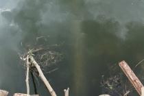 """""""Водоканал"""" города Задонска под прикрытием местных властей «маскирует» следы загрязнения реки Дон"""