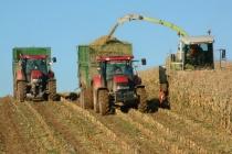 Липецкий губернатор увидел в своем регионе лидера по экспорту продукции АПК