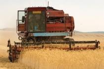 Липецкий «Агрохолдинг АСТ» одолжил у Сбербанка 105 млн рублей на сельхозтехнику