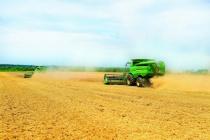 Холдинг «Авангард-Агро» на обработке земель в Черноземье нарастил выручку на 57 процентов