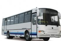 Бизнесмены и налоговики довели скандальную липецкую транспортную компанию до конкурсного производства