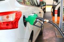 Липецкие инвесторы готовы вложить в строительство газовых АЗС 311 млн рублей