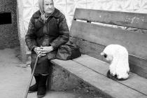 Липецкая область оказалась в тройке «призёров» антирейтинга по пенсионной бедности