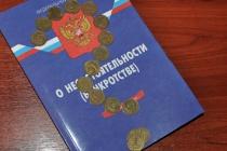 В Липецкой области директор «Елецкой Строительной Компании» не пожелал банкротить свою фирму, несмотря на долги
