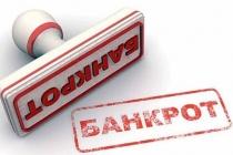 Липецкий завод строительных конструкций скандального бизнесмена Николая Орлова признан банкротом