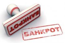 В Липецкой области число банкротств среди юрлиц за полугодие выросло на 4,5%