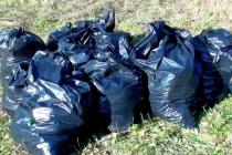 В липецком парке собрали более 100 мешков мусора