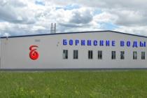 Липецкая компания «Боринские воды» планирует начать выпуск новой продукции