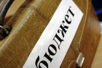 Липецкие власти намерены в 2016 году привлечь в областной бюджет более 42 млрд рублей