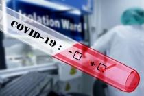 Количество заболевших коронавирусом в Липецкой области постепенно снижается