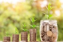 Что делать в условиях падения прибыли?