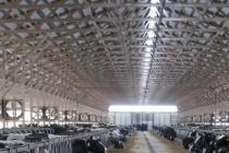 Липецкая компания «ДримВуд» получила разрешение на производство конструкций для птичников
