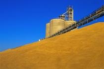 «АгроТерра» заканчивает строительство в Липецкой области своего предприятия по хранению зерна на 70 тыс. тонн