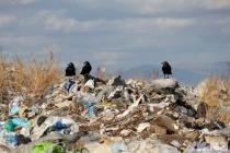 В Липецкой области ликвидировали 133 незаконных свалки