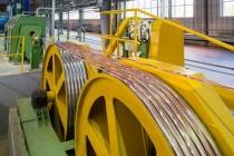 Липецкая компания «Юнионвайр» собирается освоить выпуск электропроводки для автомобильной промышленности