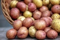 Столетнюю Липецкую картофельную станцию готовы продать за 648 млн рублей