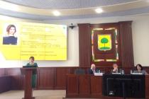 Депутат Николай Быковских назвал плагиатом часть концепции о развитии Липецка Евгении Уваркиной