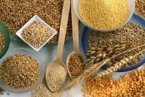 Липецкая прокуратура намерена вынести штраф «Никольской мельнице» за хранение мусора вместе с зерном