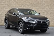 Lexus известного липецкого архитектора могли поджечь недоброжелатели?