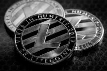 Курс LTC и работающие с Litecoin обменники: как и когда можно выгодно произвести обмен?