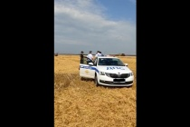 В Липецкой области в конфликт фермеров и СХП «Мокрое» вмешался ОМОН