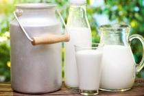 Торговцы запчастями банкротят крупный молочный завод в Липецкой области из-за полумиллионного долга