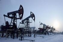 С начала года в России добыча нефти увеличилась на 1,4%