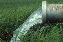 Липецкий «Светлый путь» заплатит штраф за сброс отходов