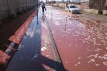 Власти Лебедяни не могут третий день отмыть город из-за тонн разлившегося сока на липецком заводе PepsiCo