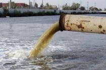 В числе пострадавших от аварии на складе PepsiCo в Липецкой области оказалась рыба
