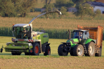 Липецкое предприятие с кипрскими корнями попалось на нарушениях земельного законодательства