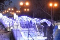 В Липецке «высадят» к Новому году «Карамельные деревья»