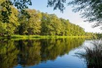 Росприроднадзор отметил улучшение состояния воды загрязненной в Липецкой области реки Усмань