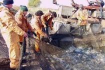 «Липецкрыбхоз» выпустит в Матырское водохранилище 30 тонн белого амура