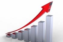 Прирост платежей липецких участников зерновой хартии превысил 160 млн рублей