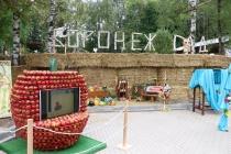 «Воронеж-Сад» собрал около 150 тыс. гостей фестиваля