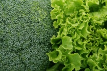 «Елецкие овощи» запустили производство салатов в Липецкой области за 1,3 млрд рублей
