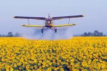 Липецких аграриев накажут за незаконную обработку полей химикатами и гибель урожая