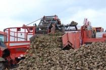 В Липецкой области «Русская агропромышленная компания» за сброс отходов оштрафована на 7,7 млн рублей