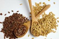 German Seed Alliance перенес строительство семенного завода в Липецкой области на 2016 год