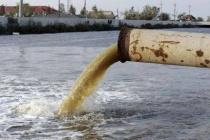Сброс липецким заводом компании PepsiCo 28 млн литров сока в реку Дон может обернуться экологической катастрофой