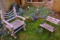 Липецкий градоначальник разрешил своим подчиненным сидеть на стульях из тропических деревьев