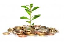 Правительство поддержит рублем будущих липецких предпринимателей