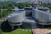 Суд в Страсбурге принял первую жалобу на штраф из-за фейка о коронавирусе от липецкой зоозащитницы