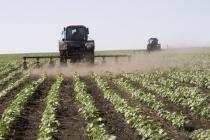 Крупный производитель сахарной свеклы в Липецкой области избежал приостановки деятельности