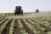 Производитель сахарной свеклы в Липецкой области для французского Sucden заплатит штраф за агрохимикаты