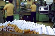 В Липецкой области компания «Усмань-табак» модернизировала линию по выпуску сигарет с фильтром