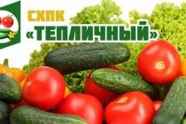«Глобус Групп» купил контрольный пакет крупного липецкого производителя огурцов и томатов