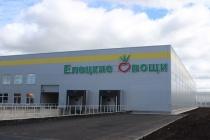 «Елецкие овощи» завершают строительство тепличного комплекса за 18 млрд рублей
