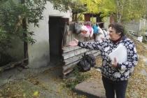 Прокуратуру попросят разобраться с невыносимыми условиями жителей частного сектора в центре Липецка